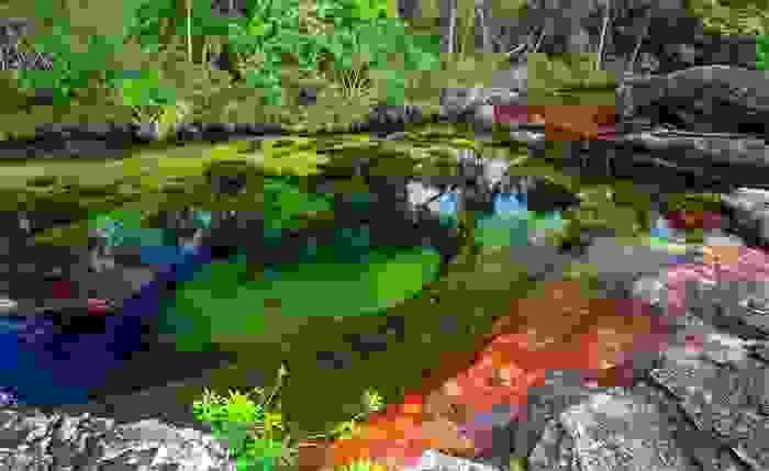 Río de Caño Cristales, situado en la sierra de la Macarena