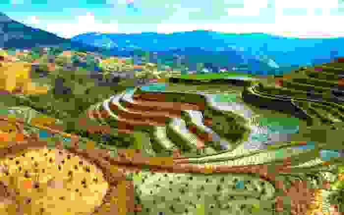 Terraza de arroz de Banaue