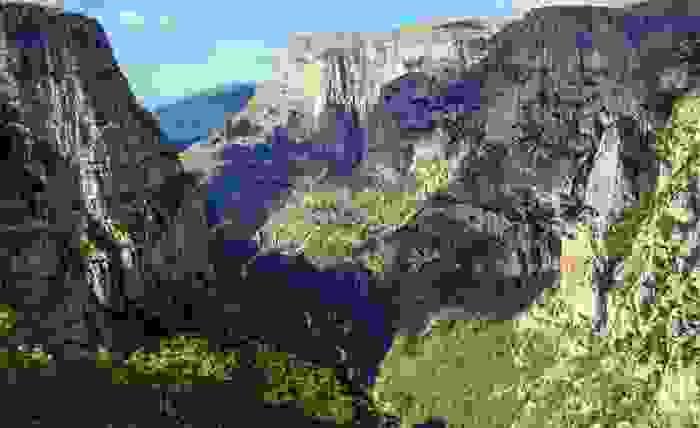 Bosques en las montañas de Zagori