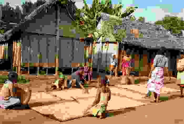 Niños secando arroz en la aldea de Antenina