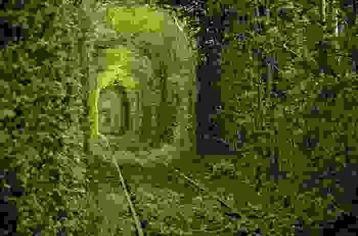 Tunel de árboles para ferrocarril